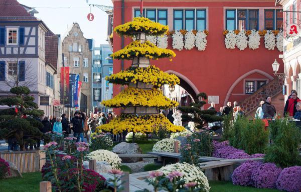 Jubiläumschrysanthema: Durchweg positive Bilanz - Image von Lahr als Blumen- und Kulturstadt konnte gefestigt werden Der japanische Garten mit sieben Meter hoher Blüten-Pagode forderte zum Erkunden heraus  Foto: Stadt Lahr