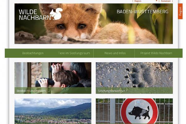 Wilde Nachbarn - Bürger können Beobachtungen von Wildtieren in Städten und Dörfern Baden-Württembergs in Web-Portal melden  Foto: www.bw.wildenachbarn.de