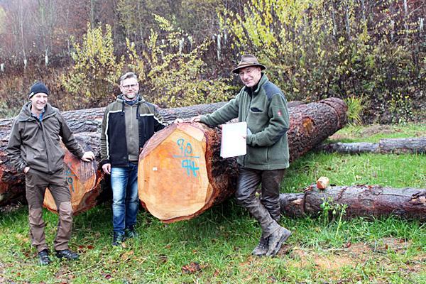 Die Förster der drei Gemeinden (von links): Stephan Schweiger (Emmendingen), Christian Funke (Herbolzheim) und Johannes Käsler (Kenzingen).  Foto: Stadt Emmendingen