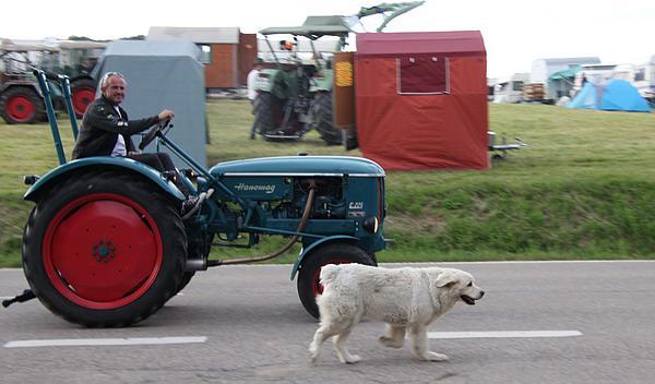 4. Internationales Oldtimer-Schlepper- und Bulldogtreffen in Freiamt (Sonntag) - Der Samstagabend  mit dem Traktor-Kino   REGIOTRENDS-Foto: Reinhard Laniot