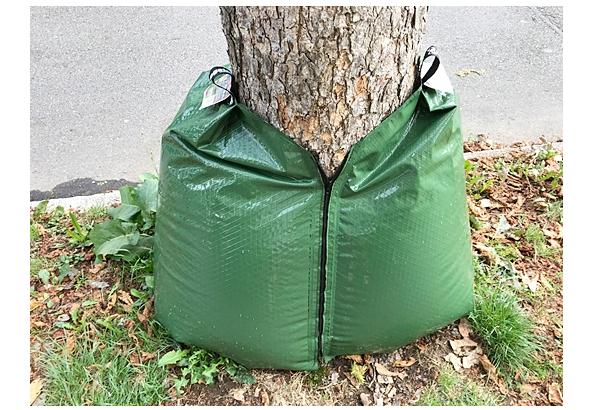 Wassersäcke zum Schutz des Baumbestandes werden in Waldkirch eingesetzt.  Foto: Stadt Waldkirch