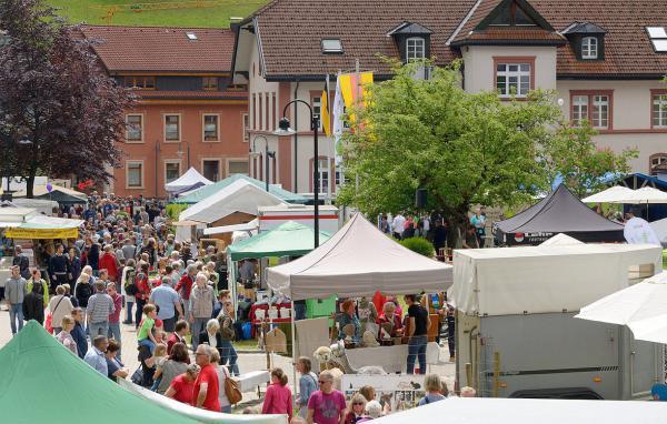 Schönau im Schwarzwald richtet Biosphärenfest 2020 aus - Lenkungskreis tagte und vergab Gastgeberrolle an Stadt im Kreis Lörrach. Über 6.000 Besucherinnen und Besucher kamen dieses Jahr zum Biosphärenfest nach Todtnau.   Foto: Thomas Stephan/Biosphärengebiet