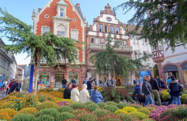 Chrysanthema-Besucher trotzten dem durchwachsenen Wetter. Sonnenplatz.   Foto: Stadt Lahr