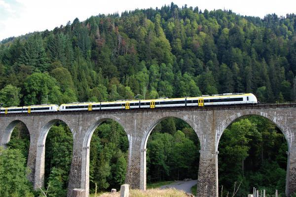 Zug auf der Ravennabrücke (Foto: DB Regio / Alexander Kurschat)