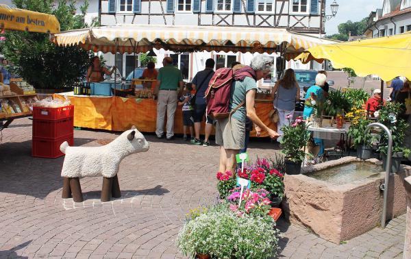 3. Juli: Wochenmarkt in Ettenheim feiert zweijähriges Bestehen auf Marienplatz.  Foto: Stadt Ettenheim