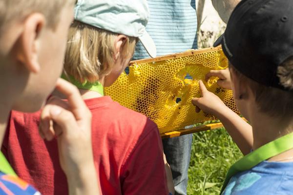 In der Naturpark-Schule lernen Kinder mit allen Sinnen.   Bild: © Markus Ketterer/Naturpark Südschwarzwald e.V.