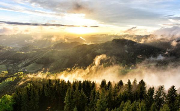 """Ab 3. August: """"Sommer in der Ortenau"""" - Wer schießt die schönsten Fotos?  Siegerfoto (Buchkopfturm) des Wettbewerbs von 2018.  Foto: Landratsamt Ortenaukreis - Steffen Birk"""