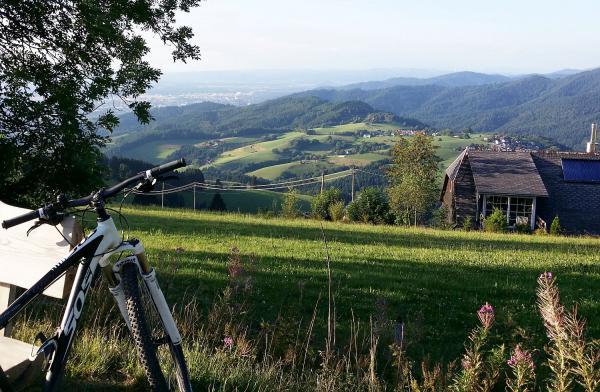 27. September: Vielfältiger Stadtwald Freiburg - Radtour in drei Etappen.  Foto: Stadt Freiburg - Nicole Schmalfuss