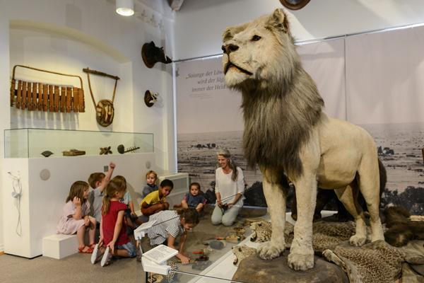 Reise um die Welt im Museum im Ritterhaus  Foto: Axel Bleyer/Stadt Offenburg