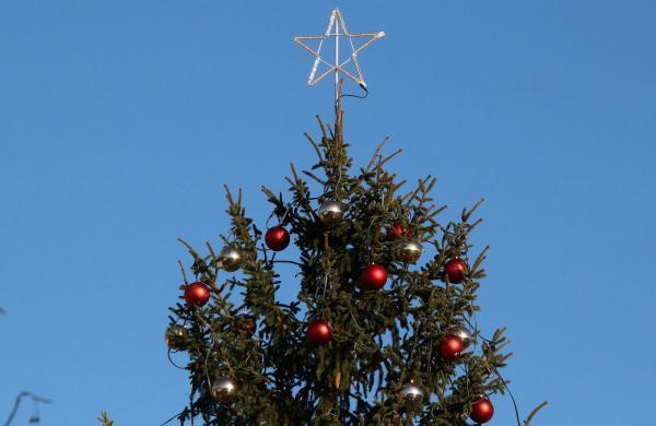 """Die gesamte Stadt lädt zum Bummeln ein: Großer geschmückter Weihnachtsbäume auf dem Marktplatz  Foto: Reinhard Laniot / """"EM-extra"""" - REGIOTRENDS-Lokalteam Emmendingen"""
