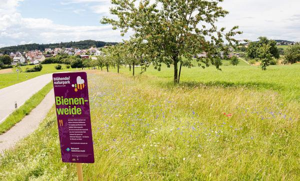"""Projekt """"Blühendes Freiamt"""" soll weitergehen.  Foto: Kurhaus und Tourist-Information Freiamt - Schroeder-Esch"""