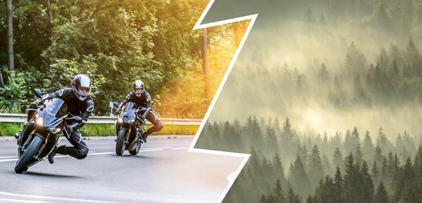 Waldesruh' vs. Motorenlärm – Wie kann es im Schwarzwald wieder ruhiger werden?   Foto: © Schwarzwaldverein