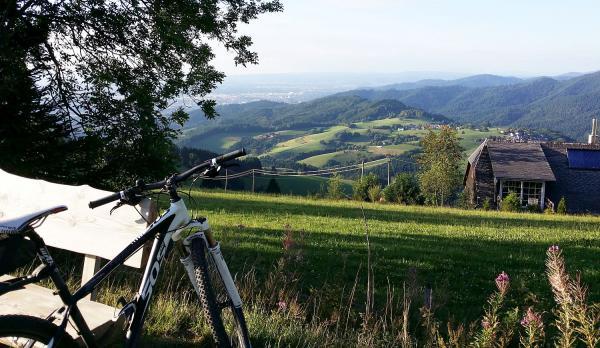 13. Juni: Vielfältiger Stadtwald in Freiburg - Radtour in drei Etappen vom Mooswald auf den Schauinsland.  Foto: Stadt Freiburg - Nicole Schmalfuß