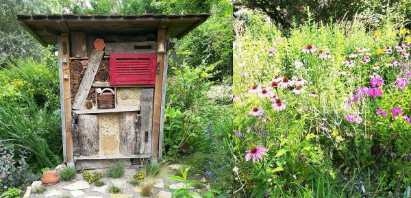 """14./15. August: Aktion """"Tag der offenen Gartentür"""" im Landkreis Emmendingen startet. Wildbienenhaus (links) und insektenfreundliche Stauden im Garten Hohenstein in Herbolzheim-Tutschfelden.  Foto: Landratsamt Emmendingen - Anny Hohenstein"""